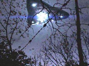 rendlesham_forest_large_thumbnail